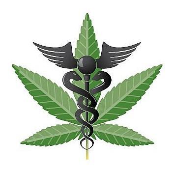 Georgia Medical Marijuana Patient Arrested – faces 4 years in prison