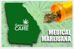 THC v. CBD v. Whole Plant Cannabis